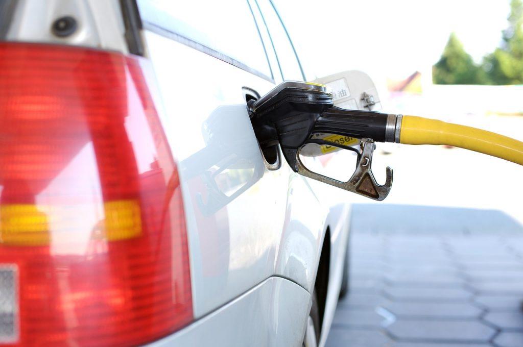 Från hampa går det att tillverka bio-disel, bio-etanol och en rad andra bränslen